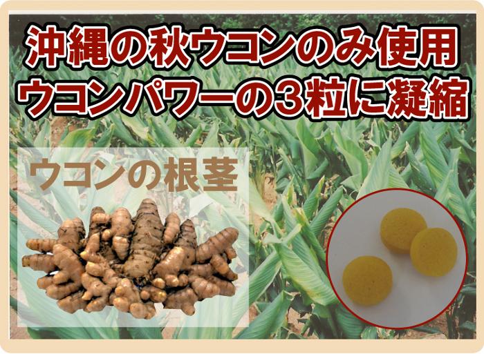 【ウコン堂のウコンパワー】沖縄産の秋ウコンのみ使用